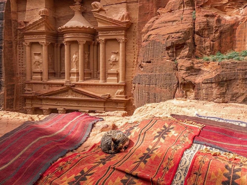 2 Weeks in Jordan - Petra Kitty