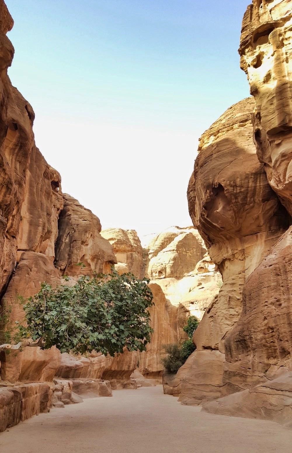 Petra Hiking - Main Trail