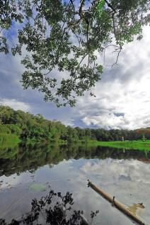 Danau Lindu, di Kec. Lore, Kabupaten Poso Sulawesi Tengah, Sekitar 2 jam kurang dari Kota Palu menggundakan mobil pribadi. DI Hutan Lindung Lindu Lore ini terdapa spesies Tarsisius dan di kawasan ini juga terdapat Patung Magalitukum, posisi tepatnya ada di lembah Bada.
