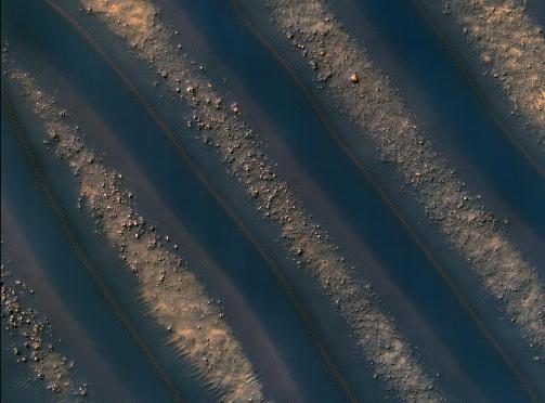 Dunas de Marte. Estas dunas de arena lineares moldeadas por el viento se encuentran en el cráter Noachis Terra, al oeste de la cuenca de impacto Hellas. Cada duna es notablemente similar a la adyacente, y todas tienen polvo rojizo en su parte más baja. La fotografía fue tomada en diciembre de 2009 por la Mars Reconnaissance Orbiter (Imagen tomada de https://www.nasa.gov/)
