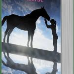 Wonder Horse by Anita Daher