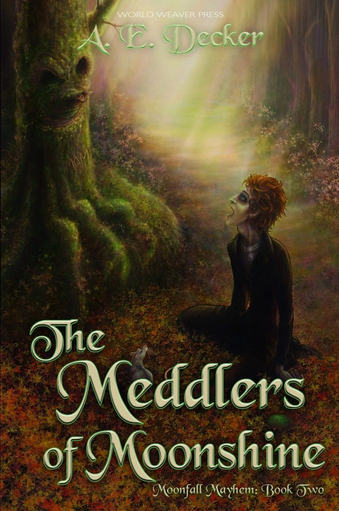 The Meddlers of Moonshine by A.E. Decker