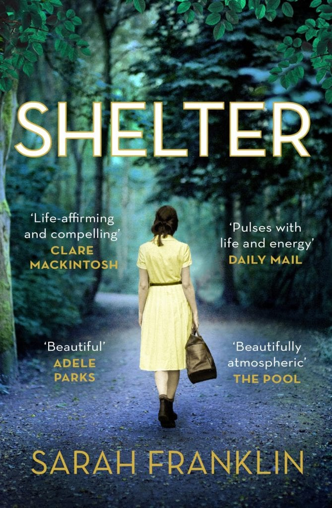 "Cover Reveal w/ Notes | A new war drama caught my eye recently ""Shelter"" by Sarah Franklin"