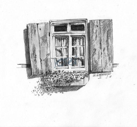Fenster Hirschhorn2