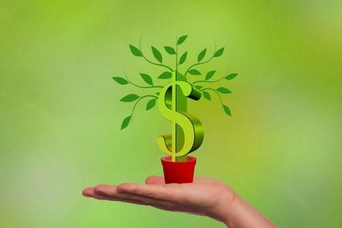 diversificação nos investimentos