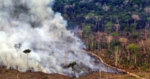 Terras indígenas funcionam como barreira ao desmatamento na Amazônia