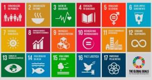 As parcerias para o desenvolvimento sustentável