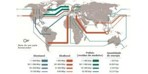 Estudo reforça importância econômica da biomassa para América Latina e África