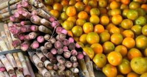 Concentração de poder de mercado pode prejudicar o agronegócio paulista