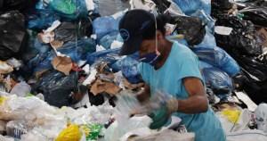 Fungos em recicláveis colocam em risco saúde de catadores
