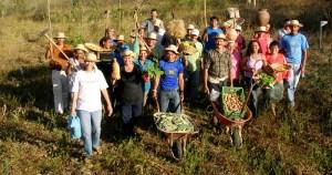 Censo Agro 2017 mostra queda da agricultura familiar