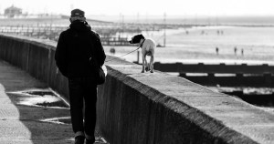 Pet Terapia beneficia saúde dos idosos em contato com animais