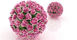 Estudo relaciona vírus HPV com mais um tipo de câncer