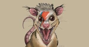 Pesquisadores identificam primeira espécie brasileira de mamífero do mesozoico