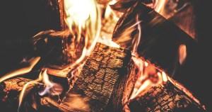 Evento discute impactos ambientais do uso da lenha para cozinhar e aquecer