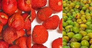 Frutas brasileiras são ricas em antioxidantes e anti-inflamatórios