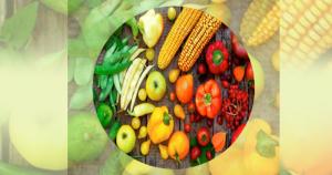 Manual orienta sobre auditoria de ambiente alimentar