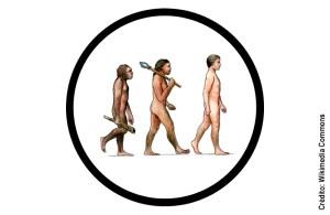 Teoria da Evolução ainda é cercada por interpretações equivocadas