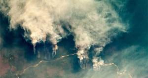 Redes criminosas impulsionam desmatamento na Amazônia