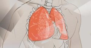 Melatonina natural produzida no pulmão pode proteger contra o coronavírus