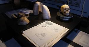 Parceria entre institutos da USP gera mostra sobre desenho e anatomia