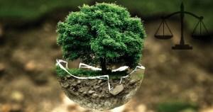 Licenciamento ambiental só deve ser concedido após avaliação estratégica e zoneamento ambiental