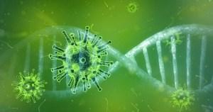Conhecimentos médicos sobre a covid-19 são tema de palestra on-line