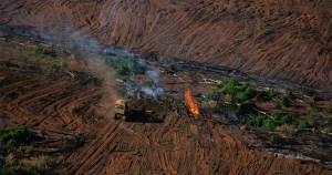 Desmatamento da Amazônia dispara de novo em 2020