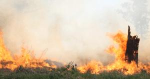 Estiagem e queimadas: baixa qualidade do ar em Ribeirão Preto preocupa cientistas
