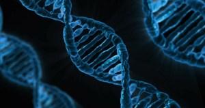 Primeiro sequenciamento do genoma, 20 anos atrás, representou um marco no estudo da genética