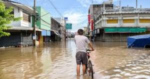 Cientistas estudam seguro que ameniza prejuízos causados por secas e enchentes
