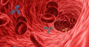 Identificado novo tipo de célula que torna os sobreviventes da sepse mais propensos a infecções