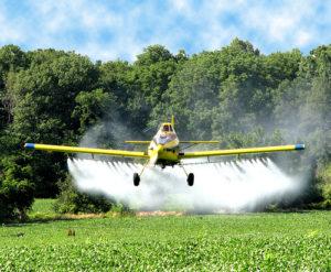 Importância da fiscalização do uso de agrotóxicos