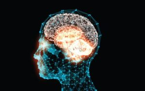 USP Analisa aborda pesquisas em neurociência