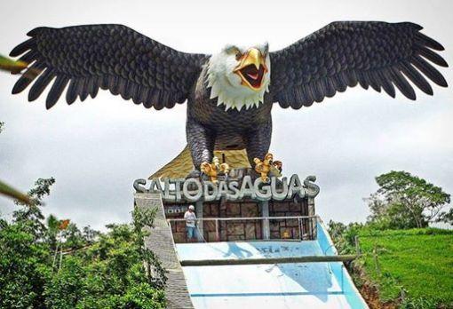 """De vôo rasante e garras afiadas um """"Predador"""" está presente nesta nova temporada. 👍😃 A Águia, rainha das alturas pousou aqui no #saltodasaguas!"""