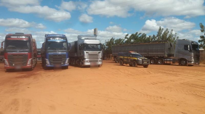 Três carretas são flagradas transportando madeira ilegal na BR-135