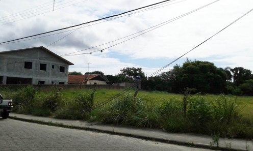 Foto: Daniela Fernandes / Divulgação