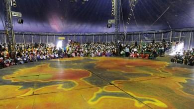 Photo of Salvador: Picolino celebra Dia Nacional do Circo com espetáculo para escolas