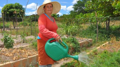 Photo of Programas sociais ajudaram a frear aumento da pobreza no Brasil, diz Pnud
