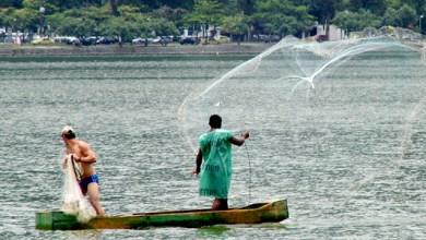 Photo of Pescadores baianos terão até 100% de desconto na tarifa de energia