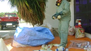 Photo of Chapada: Adab apreende medicamentos e agrotóxicos clandestinos em Itaberaba