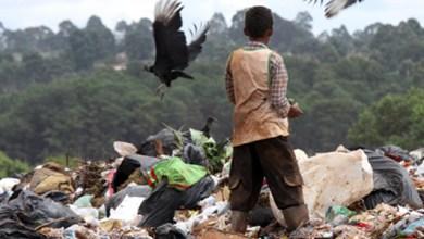 Photo of Unicef aponta que 6,6 milhões de crianças até 5 anos morreram em 2012