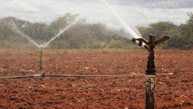 Photo of Mais de R$ 10 milhões serão liberados para obras de irrigação e barragens na Bahia