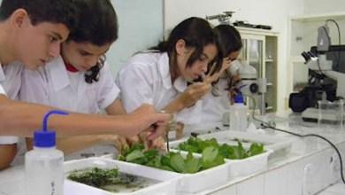 Photo of Estudantes brasileiros participam da Olimpíada Internacional de Biologia
