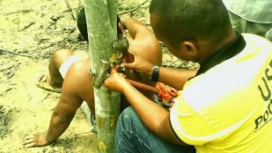 Photo of Chapada: Homem é assaltado e acorrentado pelo pescoço em árvore em Piritiba