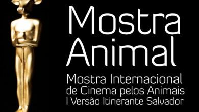 Photo of Salvador recebe Mostra Internacional de Cinema Pelos Animais