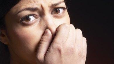Photo of Mundo: Cheirar flatulências ajuda a prevenir câncer e outras doenças, diz pesquisa