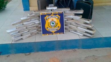 Photo of Chapada: Mais de 50 kg de maconha são flagradas durante fiscalização em Itaberaba