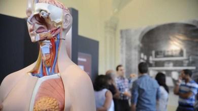 Photo of Chapada: Parceria com prefeitura viabiliza implantação de curso de medicina em Jacobina