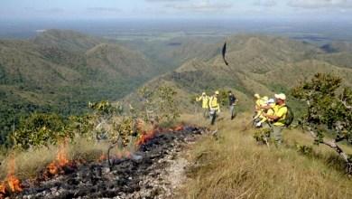 Photo of Sema e Inema combatem incêndios no oeste do estado e na Chapada Diamantina